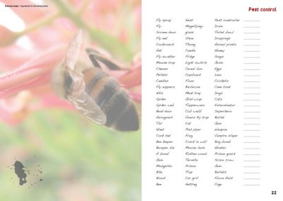 extreme-nouns-2012-brainstorming-with-nouns-lists-word-associations-pest-control-nouns